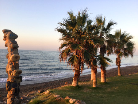 Mediterranean beach with palm trees in Los Rubios near the centre