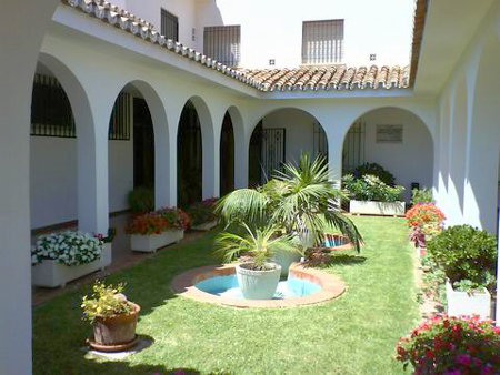 Andalusian patio with plants in the midday sun